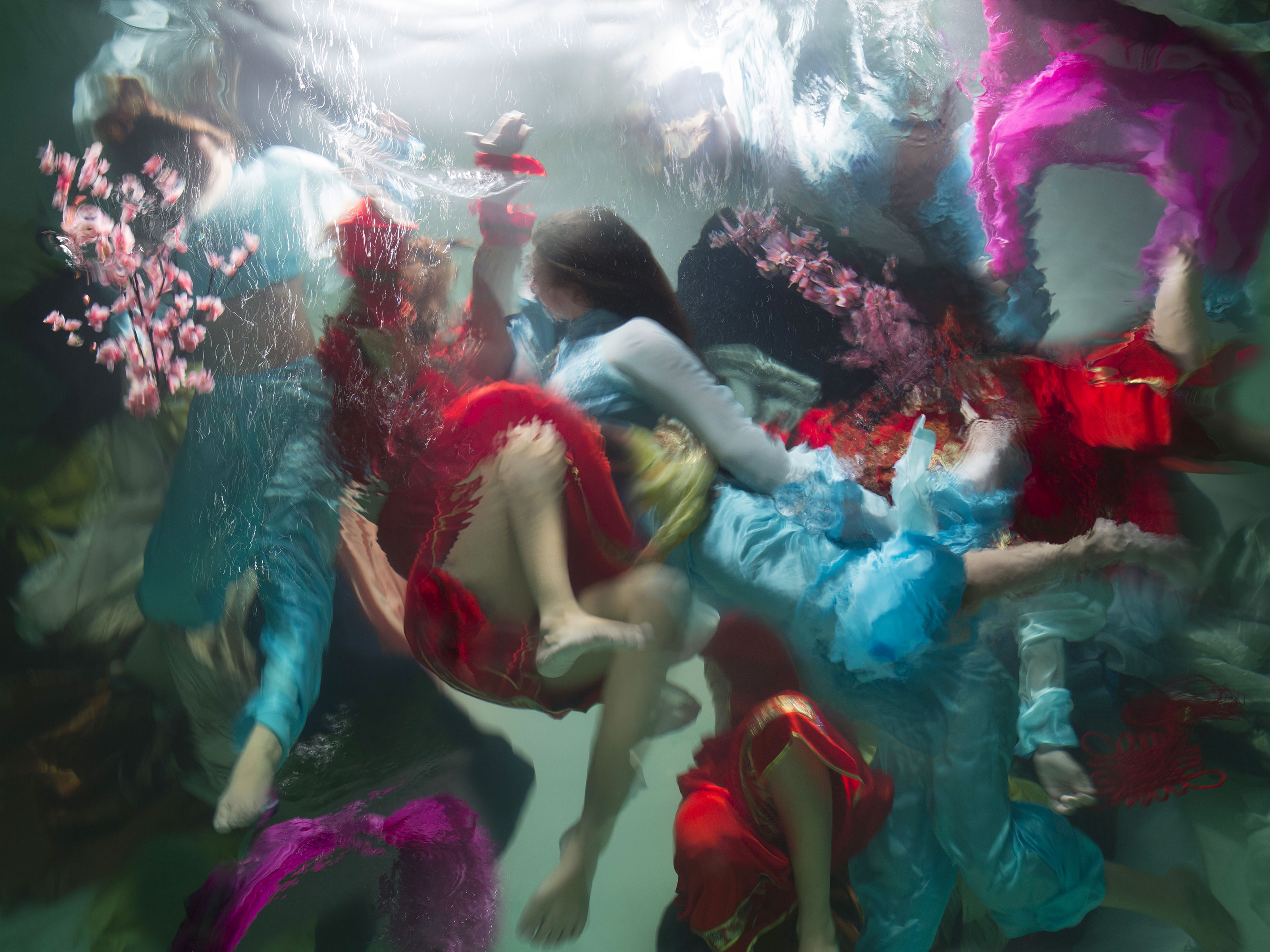 CHRISTY LEE ROGERS  - World Photography Award